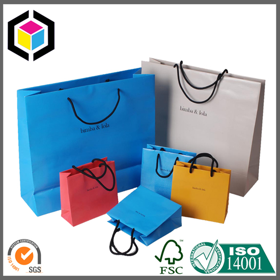 Luxury Color Printing Shopping Paper Bag