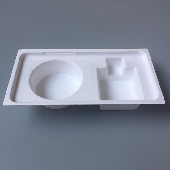 100% Biodegradable Bagasse Pulp Mould Box Package