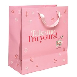 2013 fashion gift paper bag