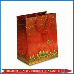 2013 Newly Christmas Paper Bag