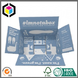 Custom Color Print Corrugated Shipping Box